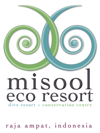 misool eco resort raja ampat indonesia